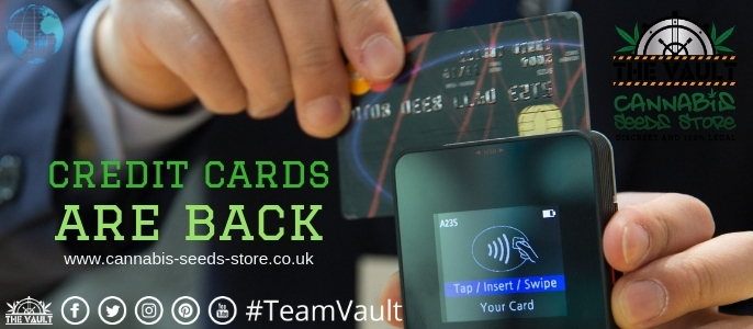 credit_cards_are_back.jpg