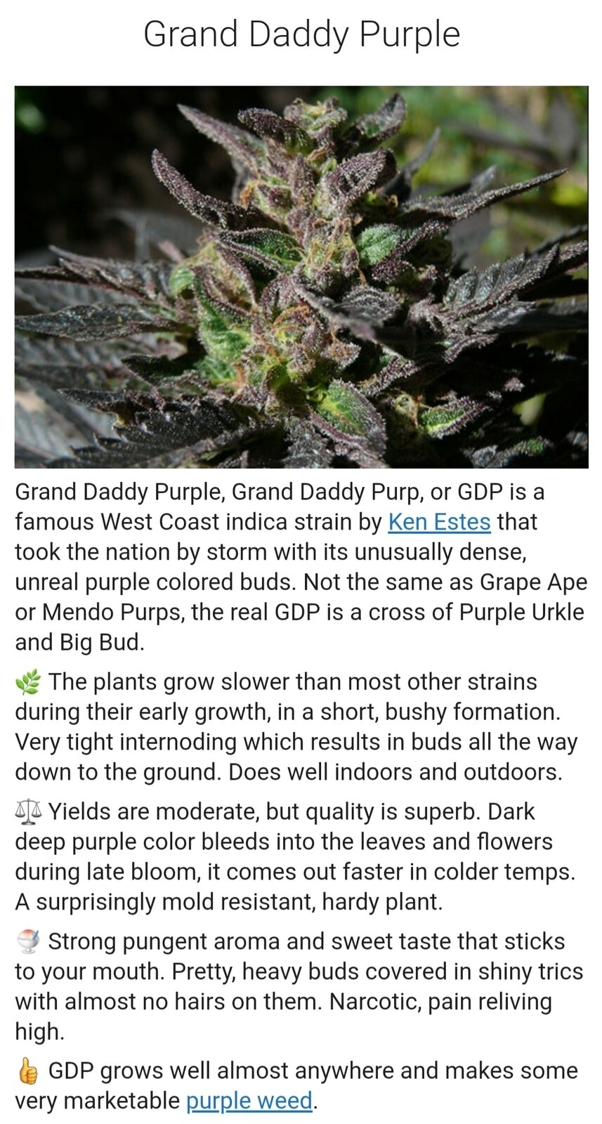 grand daddy purple.jpg
