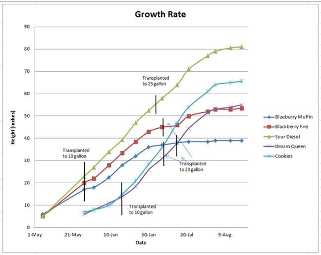 Grow Chart.jpg