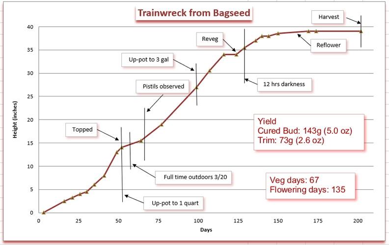 Growth chart 12.jpg