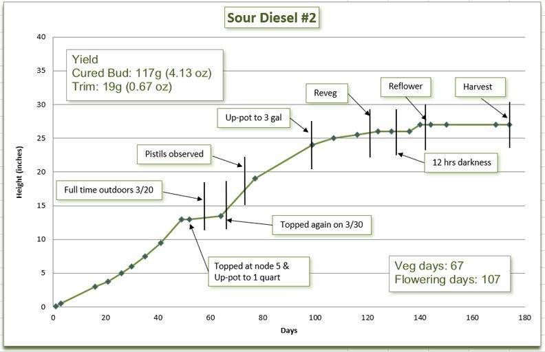 Growth chart 13.jpg