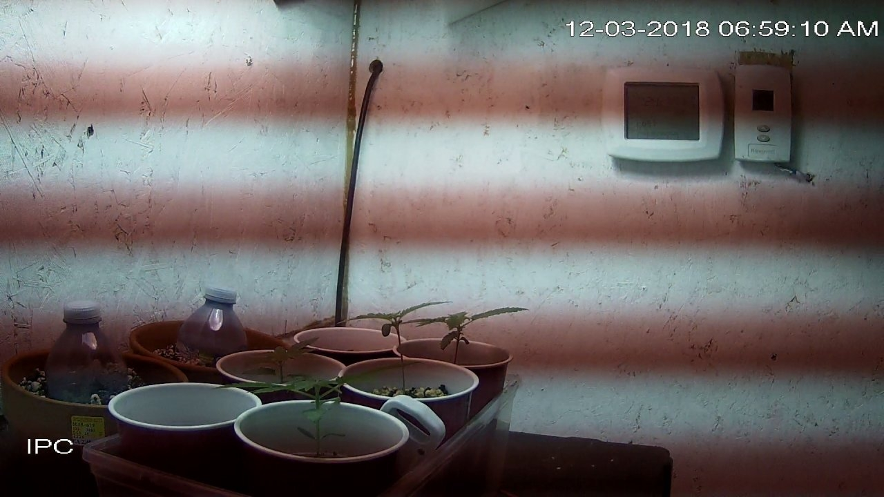 home_CAM 1_main_20181203065910.jpg