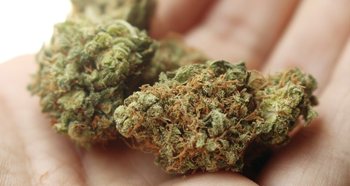 Marijuana-Card-Patient.jpg