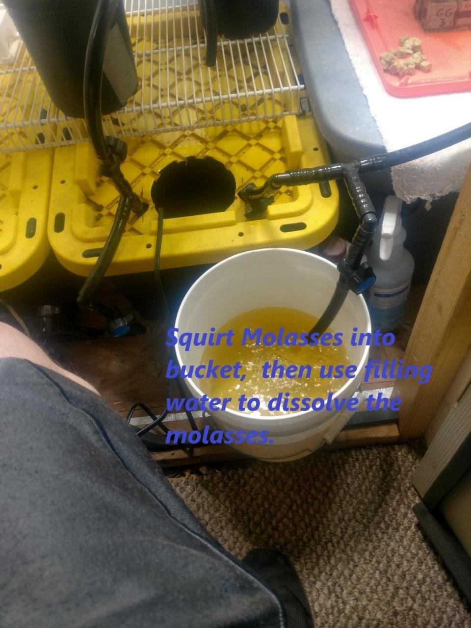 Molasses Mix.jpg