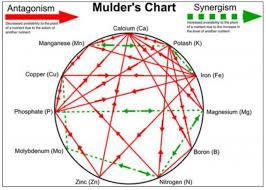 mulders-chart-e1465939603653.jpg