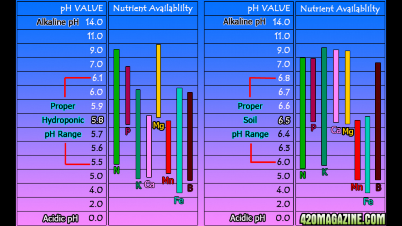 pH Chart.png