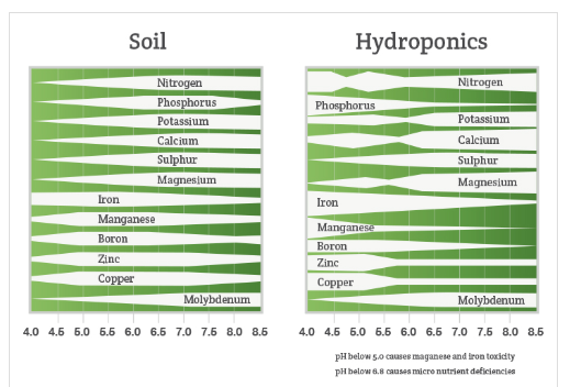 PH Nutrient Absorption.PNG