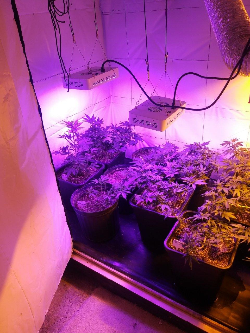 Room View 1.jpg