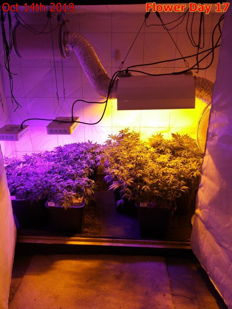 Room View 3.jpg