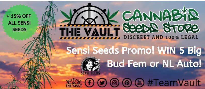 Sensi-Seeds-Promo.jpg