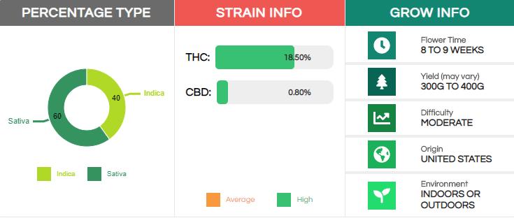 sour-diesel-strain-info.png