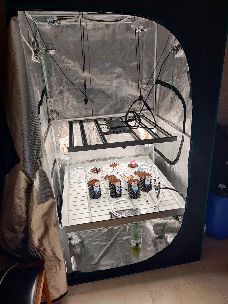 Tent - 5.jpg