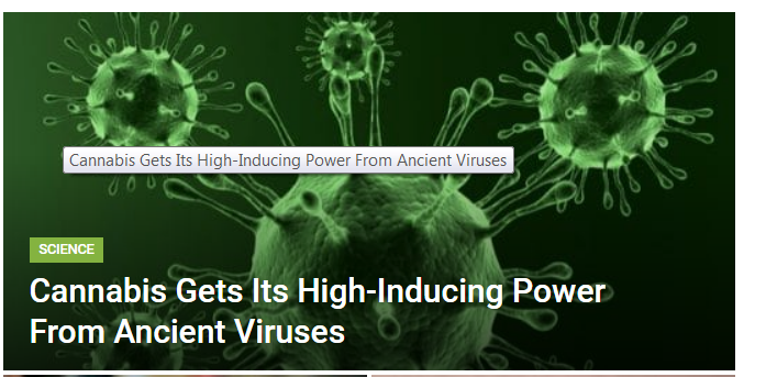 Virus induced..PNG