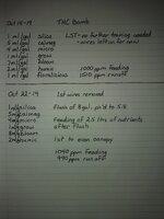 THC Bomb log.jpg