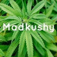 Madkushy