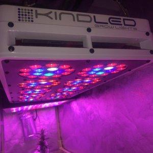 Kind K3 L600w