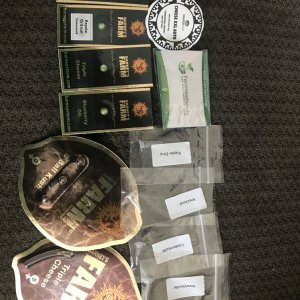 Gorilla prize package