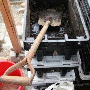 VC shovel.jpg