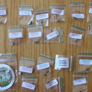 Seedsman 420.jpg