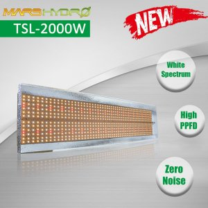 Mars Hydro TSL-2000 led grow light 2.jpg