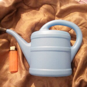Big Blue 1L Watering Can