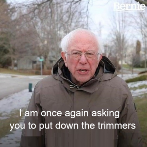 bernie_put_down_the_trimmers.png