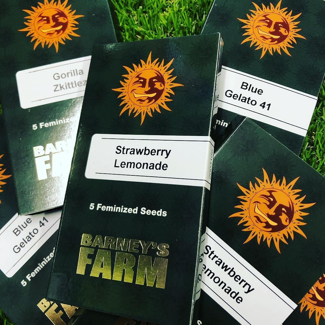 Barneys Farm New Packaging Launch