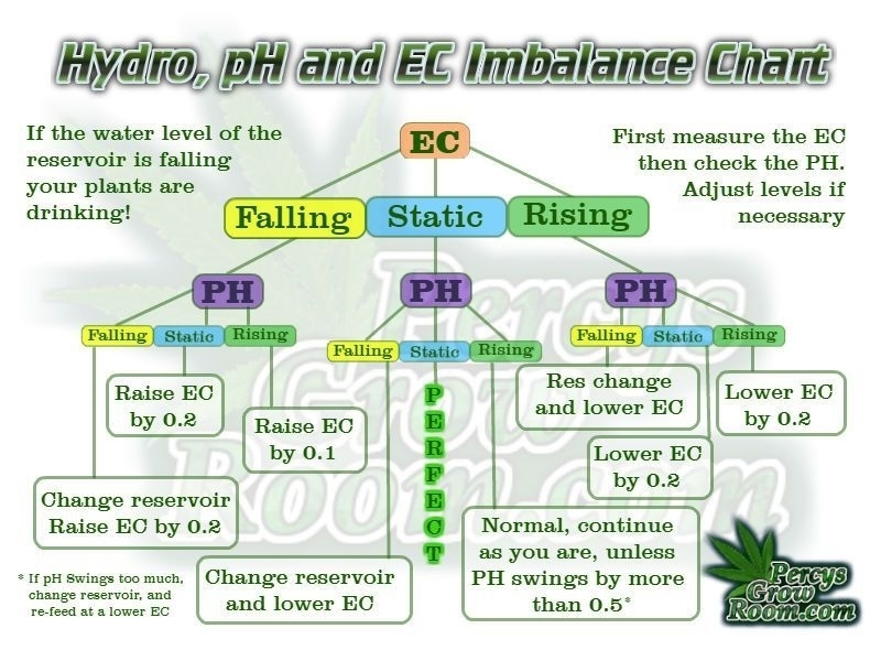 Hydro pH and EC Imbalance Chart.jpeg