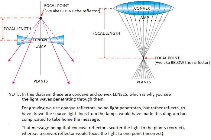 Concave_vs_Convex_FP.jpg