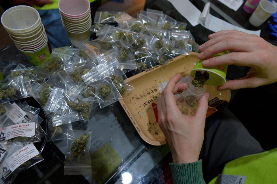 Cannabis_Baggies.jpg