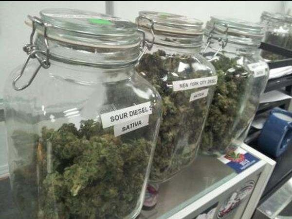 Cannabis_In_Jars2.JPG
