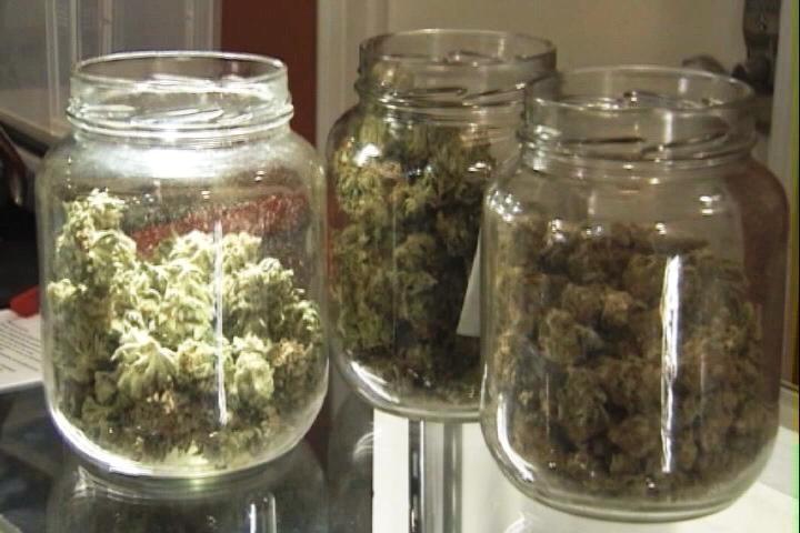 N J Health Department Must Produce Progress Report On Medical Marijuana Program