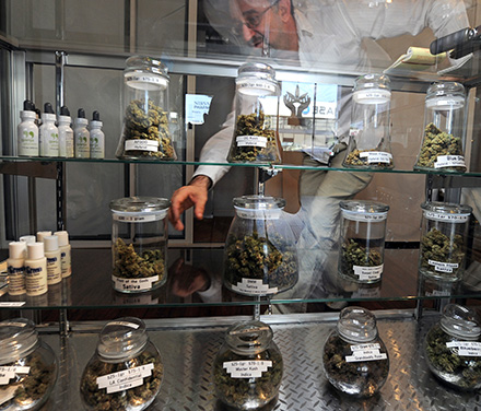 Cannabis_In_Jars8.jpg