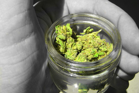 Cannabis_Jar_Hand.jpg