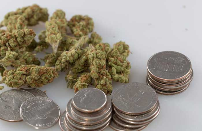 Cannabis_and_Coins_-_Tom_Sydow.jpg