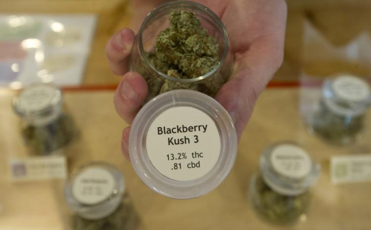 Cannabis_in_Jars11.jpg