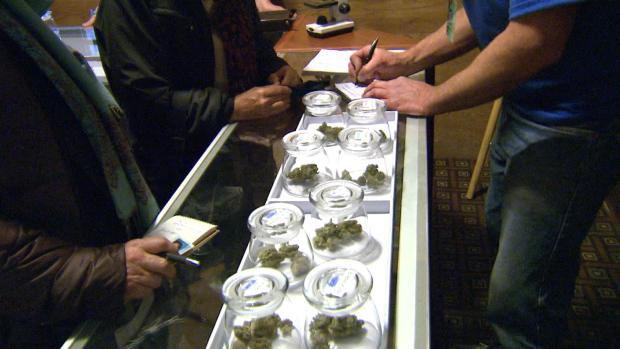Cannabis_in_Jars12.jpg