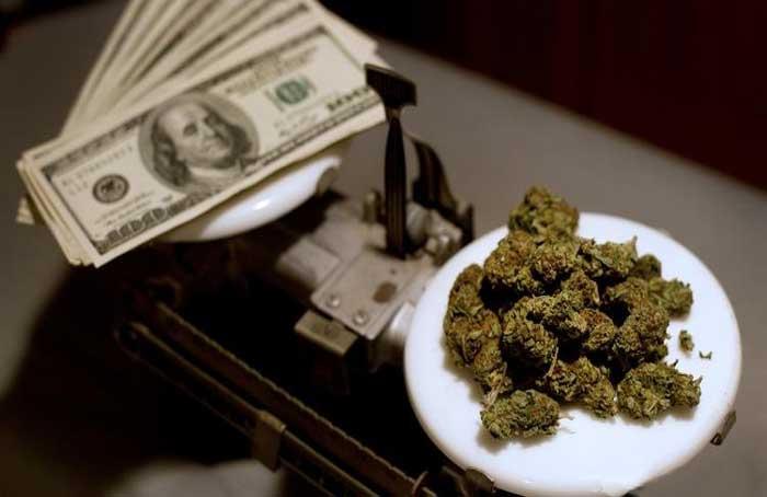 Cash_Money_Marijuana_-_Bloomberg1.jpg