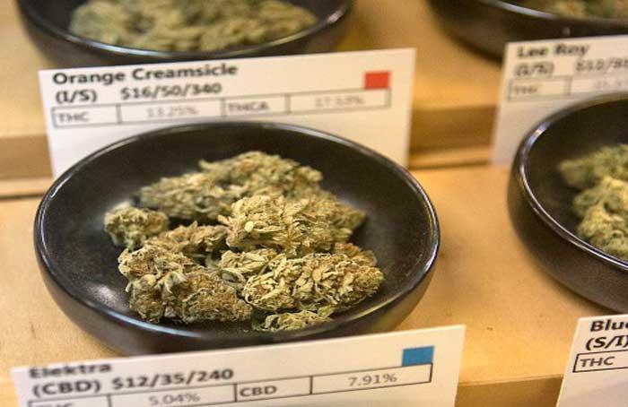 Dispensary_Buds_-_LiPo_Ching.jpg