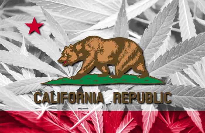 Flag_California_Cannabis_-_Shutterstock.jpg