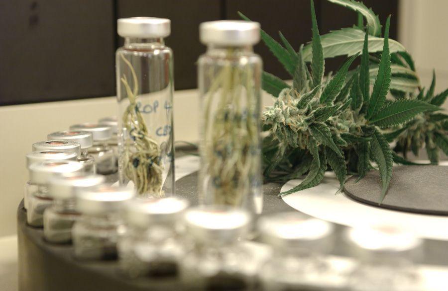 GWPharmaceuticals.jpg
