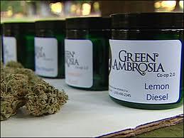 Green_Ambrosia1.jpg
