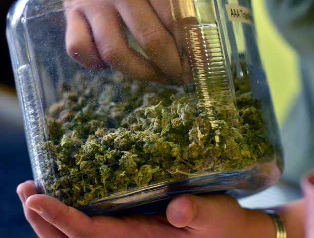 Hand_in_Cannabis_Jar.jpg