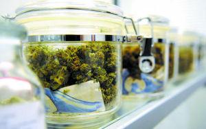 Marijuana_In_Jars.jpg