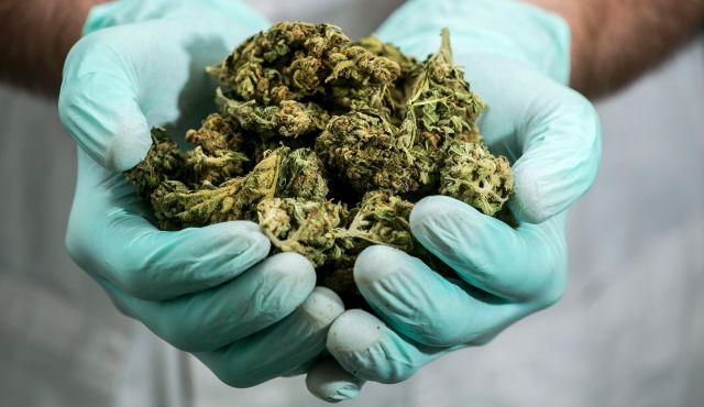 Medical-marijuana-israel.jpg