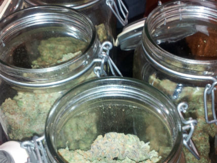 Medical-pot-jars.jpg