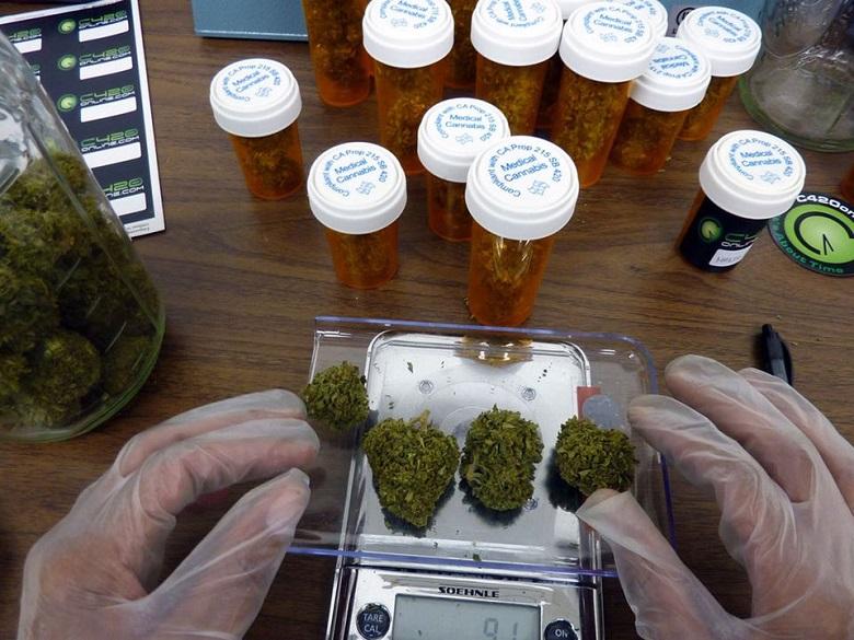 MedicalMarijuana4.jpg