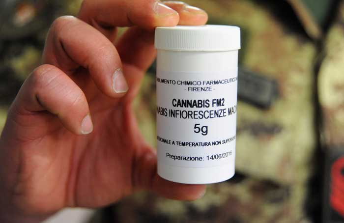 Medical_Cannabis_-_Laura_Lezza.jpg