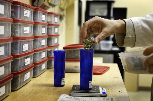 Medical_Cannabis_.jpg
