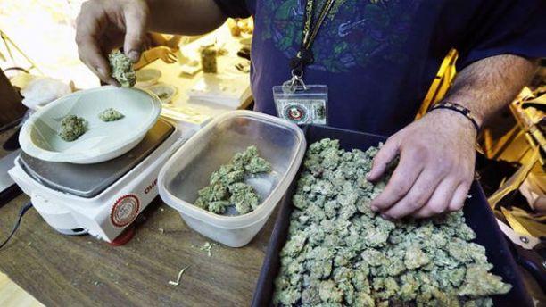 Medical_Cannabis_23.jpg